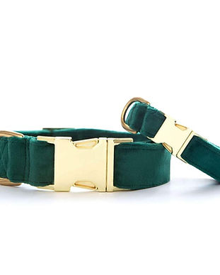 forest-green-velvet-dog-collar-from-the-