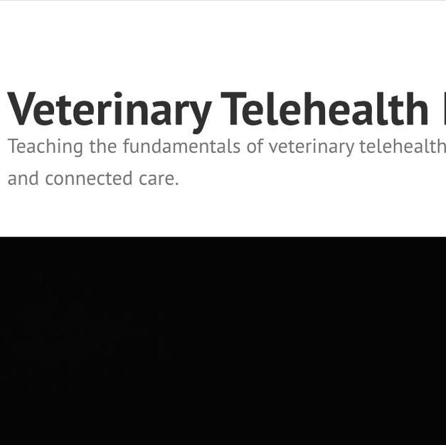 Telehealth Essentials