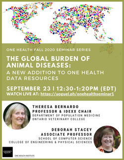 The Global Burden of Animal Diseases: A New Addition to One Health Data Resources