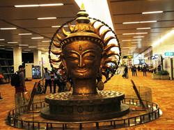 India2014Sp 1076