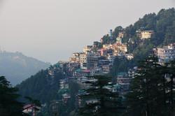 DharamsalaMorning