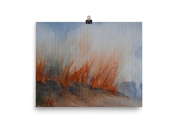 Brush Fire Digital Print