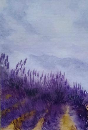 Morning in the Lavender un souvenir de F