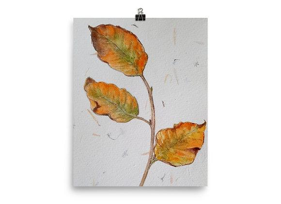 Autumn Leaf Sway Digital Print
