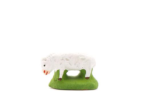 Mouton Puce