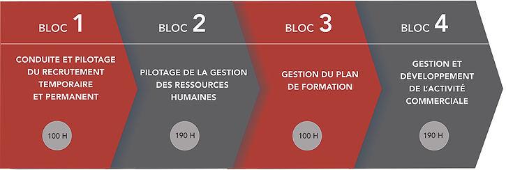 programme_blocs_web.jpg