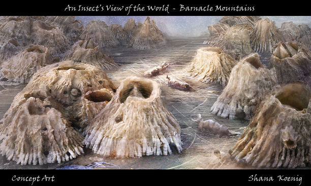 Barnacle Mountains by Shana Koenig