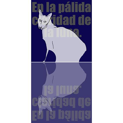 Gato Luna - Ángel Baltasar