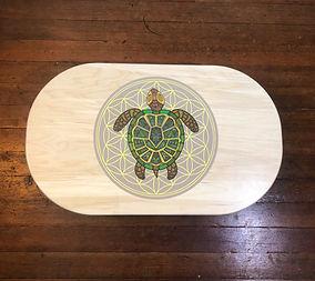 Turtle-medicine-balance-board.jpg