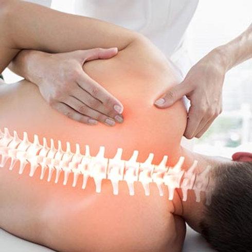 Exercícios corretivos para prevenção de dores nas costas.