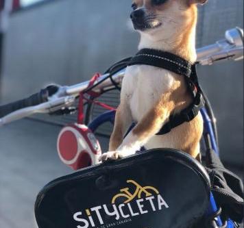 El recorrido de la Sítycleta