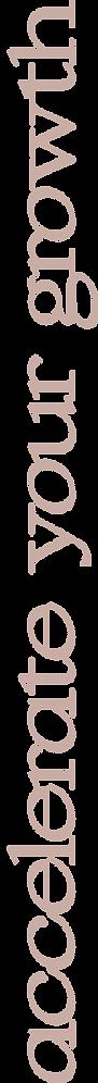 logo Asset 33.png