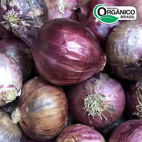 Cebola roxa Orgânica 400g - 500g