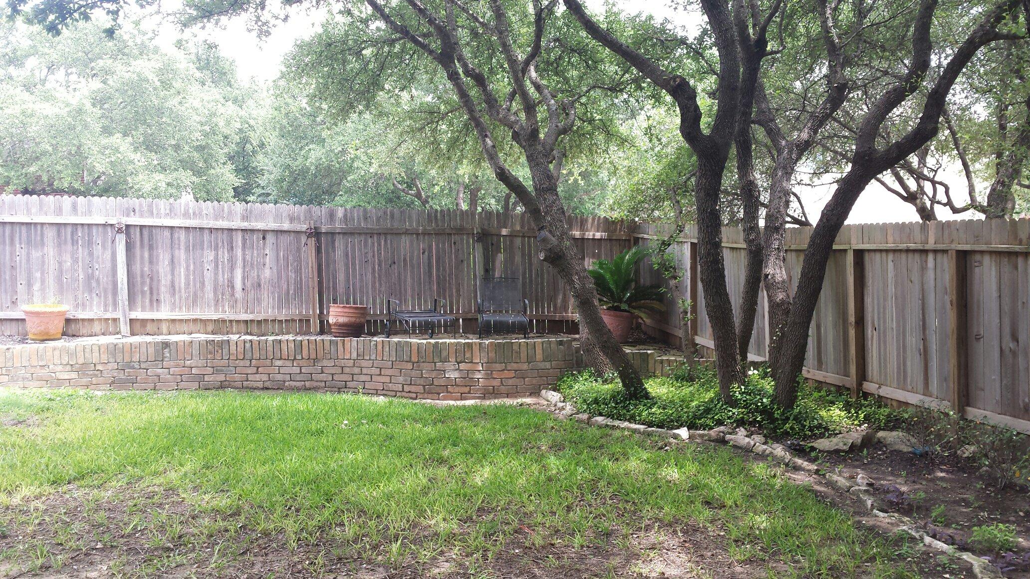 Exterior Backyard