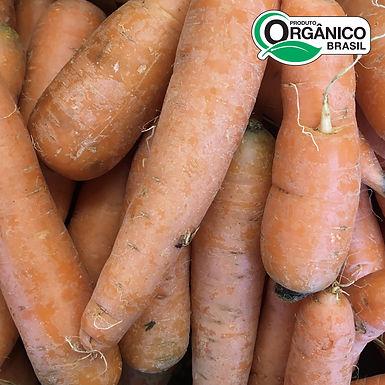 Cenoura Orgânica 500g - 600g