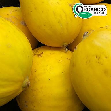 Melão Orgânico 1kg - 1,5kg