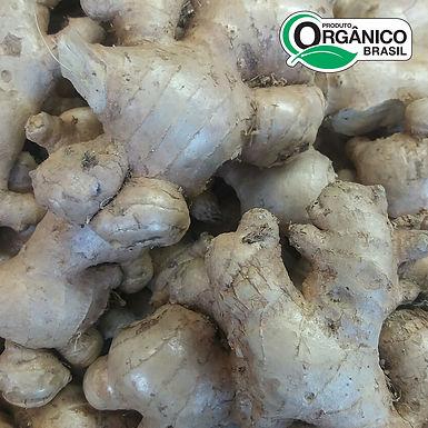 Gengibre Orgânico 150g - 200g