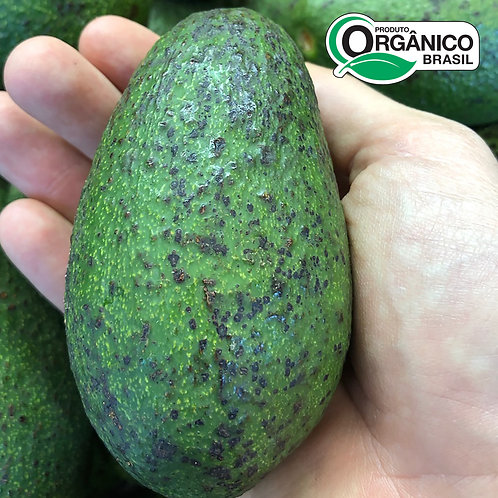Avocado Orgânico 250 - 300g