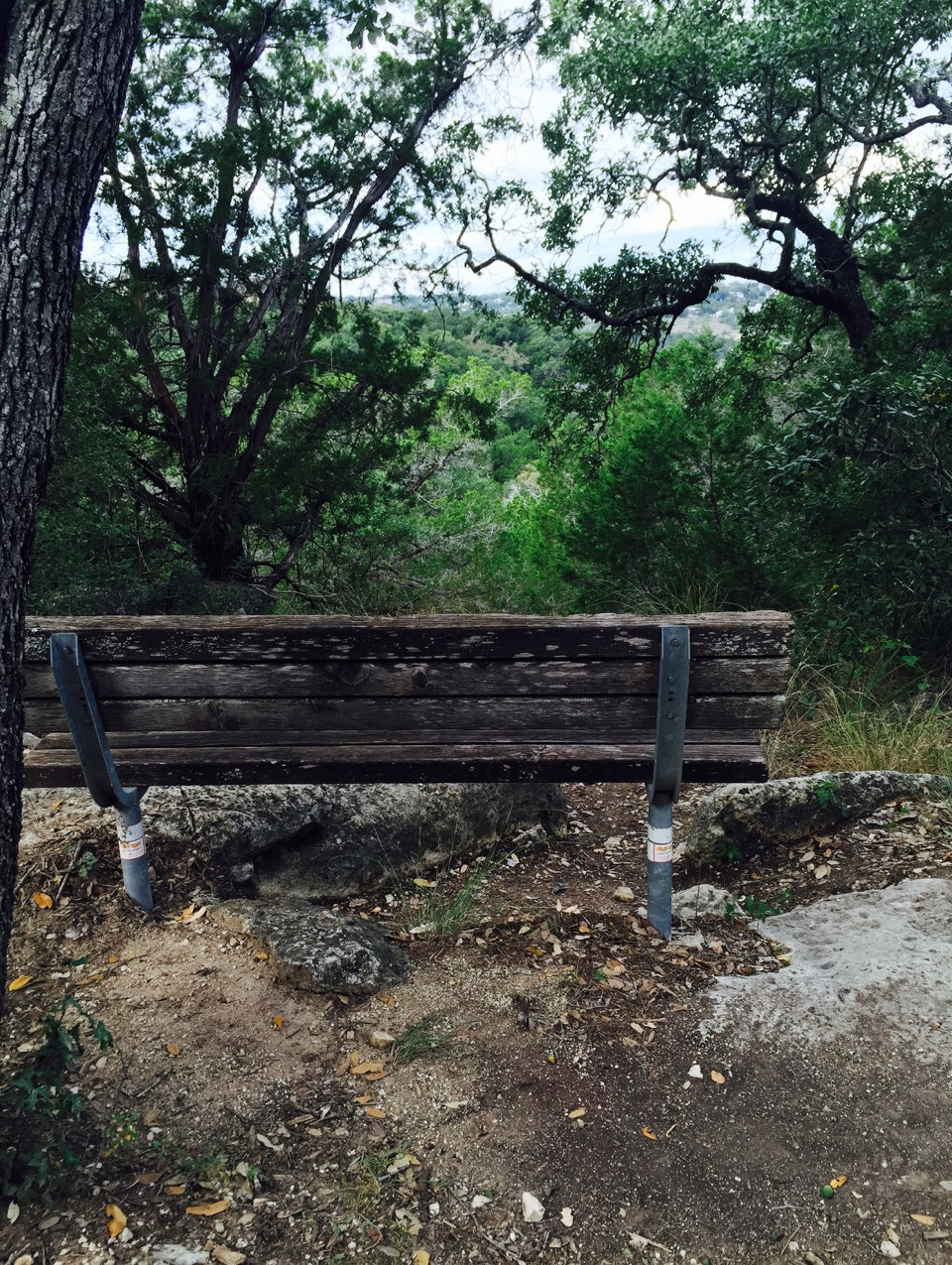 Bench Seats with Views