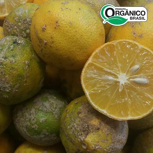 Limão Galego Orgânico aprox. 500g