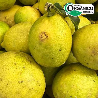 Limão Siciliano Orgânico aprox. 500g