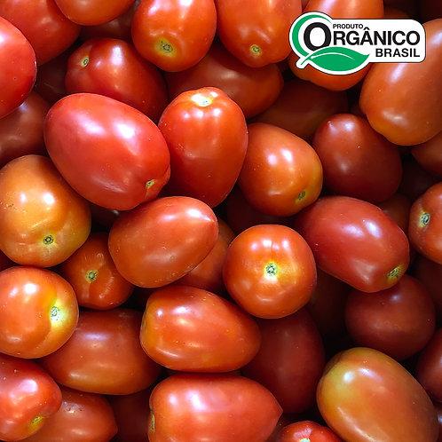 Tomate Italiano Orgânico aprox. 500g