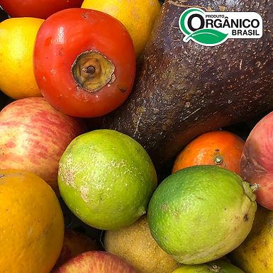 Seleção de frutas da Xepa Orgânica aprox. 500g