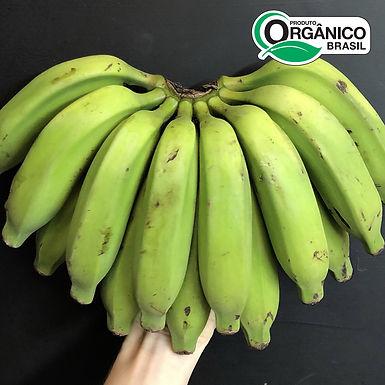 Banana Prata Orgânica 1-1.5kg
