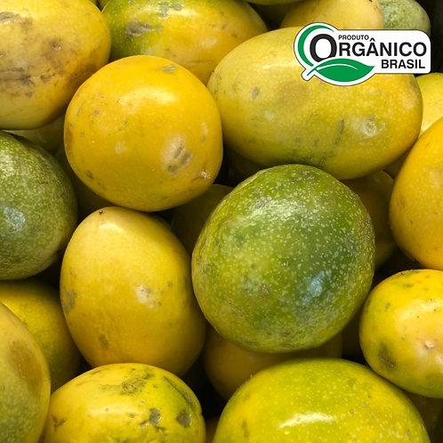 Maracujá Orgânico 500g - 600g