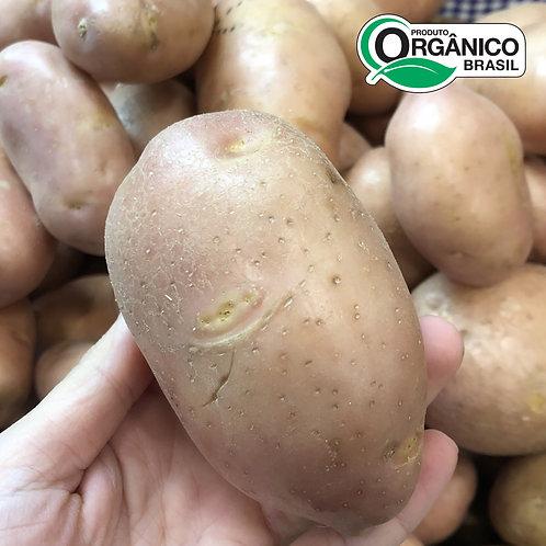 Batata Asterix Orgânica  500g - 600g
