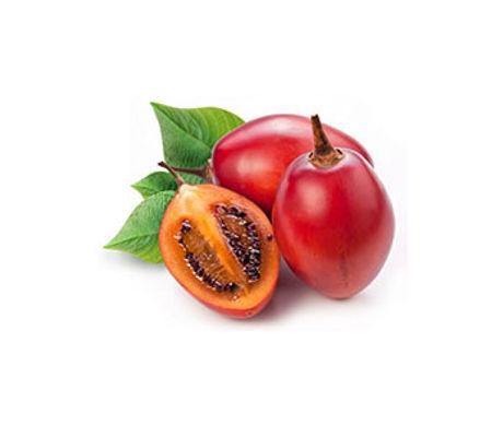 tree-tomato.jpg
