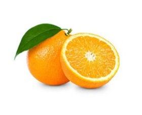 orange_edited_edited.jpg