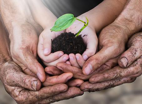 Cultivating Faithfulness