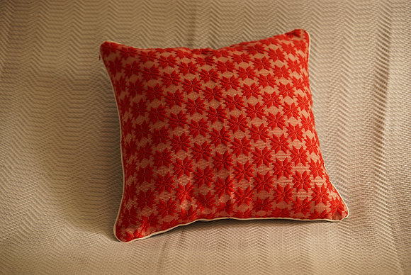 Pinilian Throw Pillow Cover