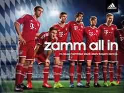 _zamm all in