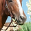 Thumbnail: Classic Equine Smooth Snaffle D Ring