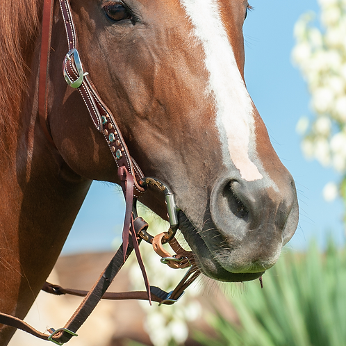 Classic Equine Smooth Snaffle D Ring