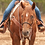 Thumbnail: Martin Saddlery Single Rope Nosebands