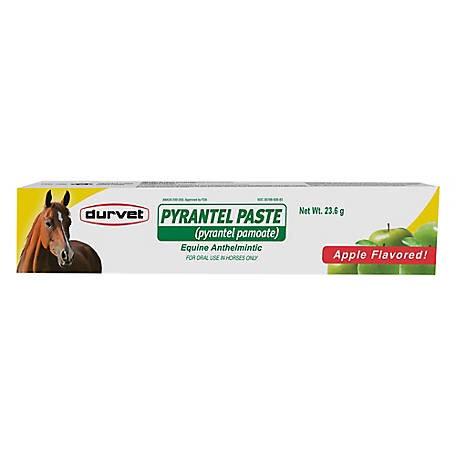Durvet Pyrantel Paste Wormer for Horses