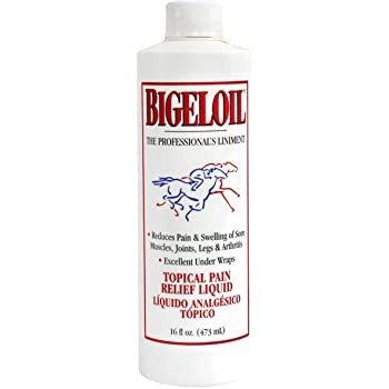 Bigeloil Liniment Liquid 16oz