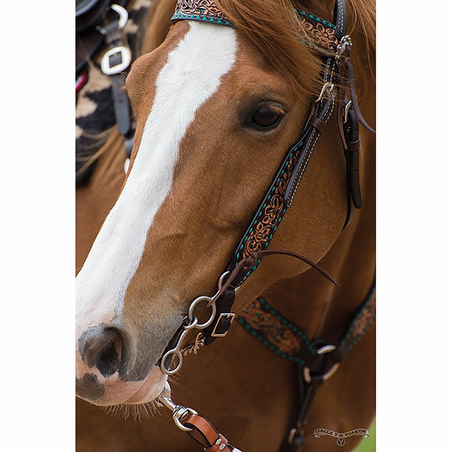 Circle Y Turquoise Inlay & Buckstitch Browband Headstall