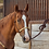 Thumbnail: Classic Equine Braided Rawhide Rope Halter with Lead