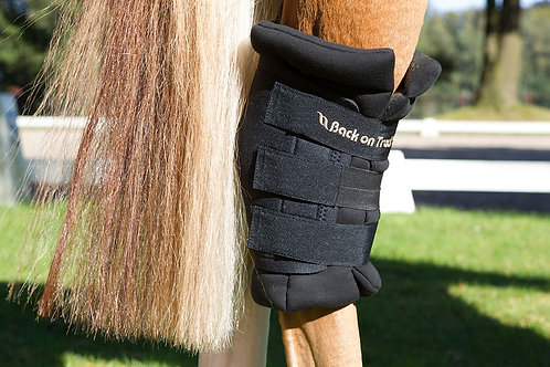 Back on Track Royal Padded Hock Boots