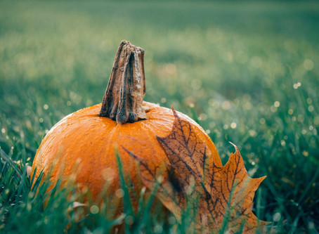 An Ode to Fall Making