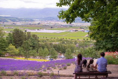 北海道富田農場 2019-07-18-08-54-28-VA4_0052.JPG