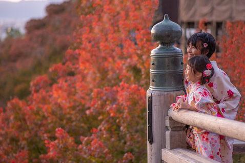 京都和服楓葉銀杏 2019-11-12-15-49-47-VA4_2475.JP