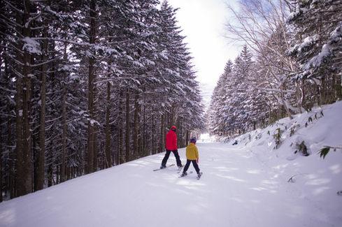 北海道星野度假村滑雪攝影 2019-01-19-10-06-25-VA4_467
