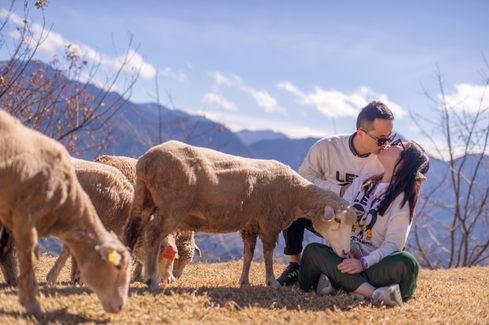 清境農場夫妻週年 2019-12-26-12.JPG
