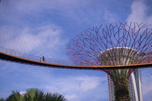 新加坡濱海灣花園Gardens by the Bay104.JPG