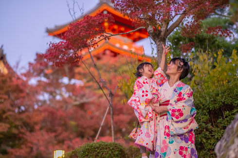 京都和服楓葉銀杏 2019-11-12-16-07-07-VA4_2530.JP